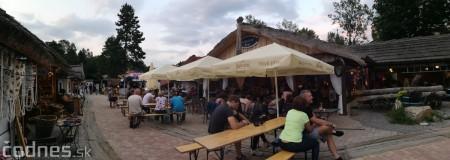 Foto a video: Koncert Iné Kafe - Bojnický dvor 46