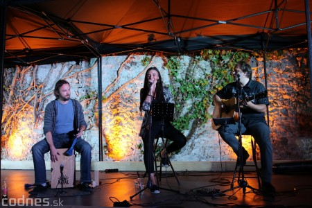 Foto a video: Koncert Zuzana Smatanová 36