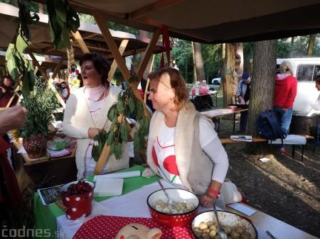 Foto a video: Hornonitrianske folklórne slávnosti 2018 - Prievidza 6
