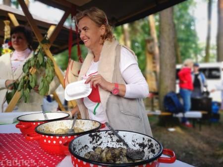 Foto a video: Hornonitrianske folklórne slávnosti 2018 - Prievidza 7