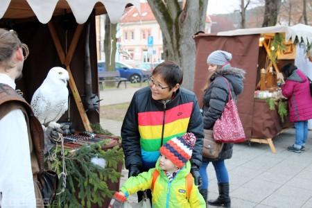 Foto a video: Bojnický Kračún 2017 - 4. ročník 151