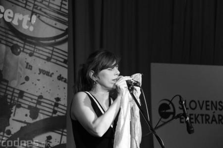 Foto: Koncert LONGITAL Prievidza 2016 16