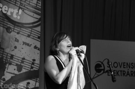 Foto: Koncert LONGITAL Prievidza 2016 17