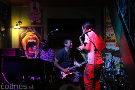 Foto a video: CHICAGO BLUES CONNECTION USA/SK 29