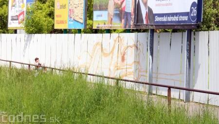 Foto: Vitajte v Prievidzi - sprejeri skrášlili plot 10