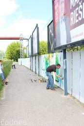 Foto: Vitajte v Prievidzi - sprejeri skrášlili plot 12