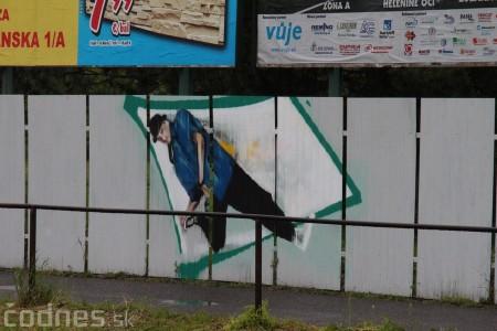 Foto: Vitajte v Prievidzi - sprejeri skrášlili plot 21