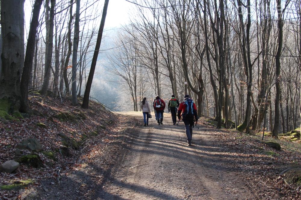 Foto a video: Lezecká oblasť Hrádok - nenechajme si zničiť prírodné bohatstvo