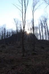 Foto a video: Lezecká oblasť Hrádok - nenechajme si zničiť prírodné bohatstvo 1