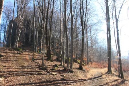Foto a video: Lezecká oblasť Hrádok - nenechajme si zničiť prírodné bohatstvo 4
