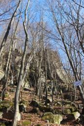 Foto a video: Lezecká oblasť Hrádok - nenechajme si zničiť prírodné bohatstvo 6