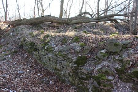 Foto a video: Lezecká oblasť Hrádok - nenechajme si zničiť prírodné bohatstvo 58