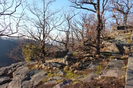 Foto a video: Lezecká oblasť Hrádok - nenechajme si zničiť prírodné bohatstvo 66