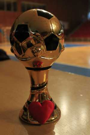 Usmev Cup 2014