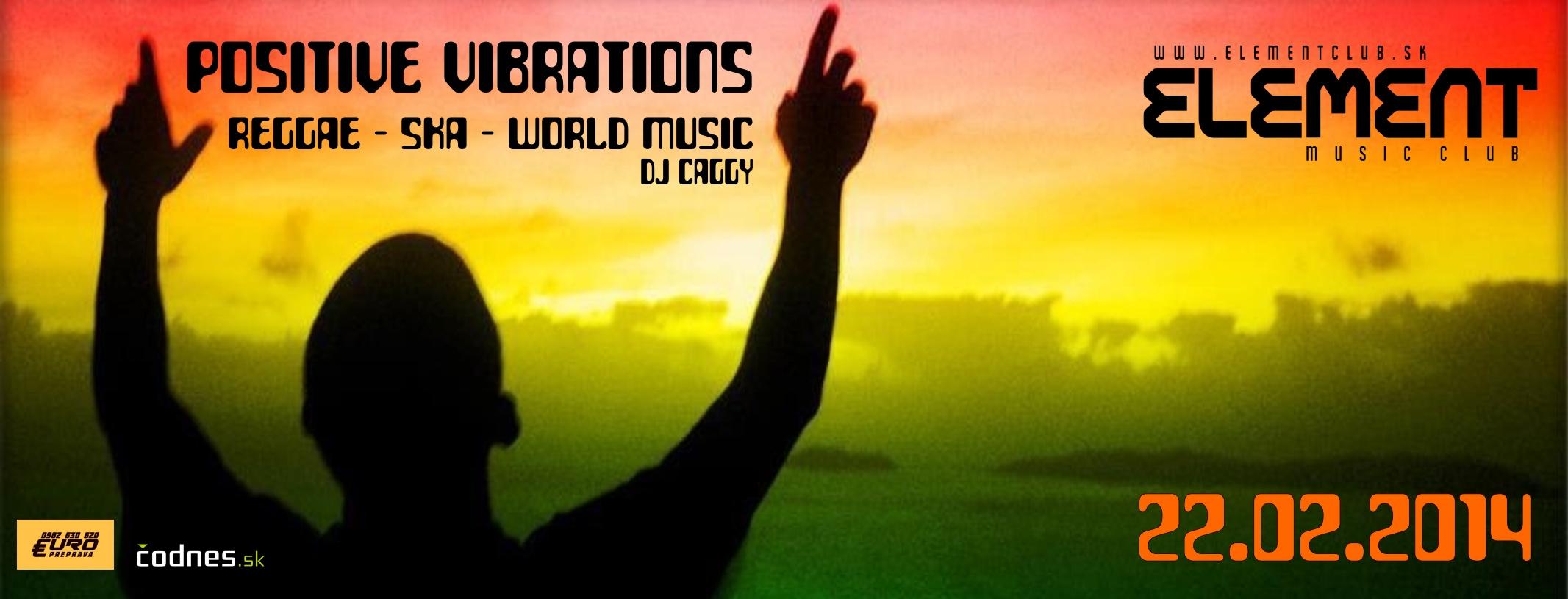 POSITIVE VIBRATIONS (reggae / ska / world music party)