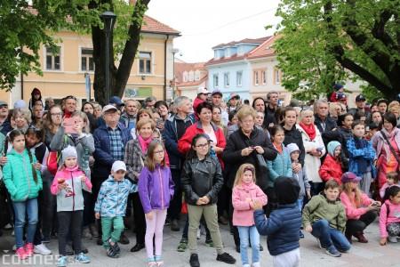 Foto a video: Bojnice - OTVORENIE LETNEJ TURISTICKEJ SEZÓNY 2019 a Oslava 25.výročia Sokoliarov Aquila 49
