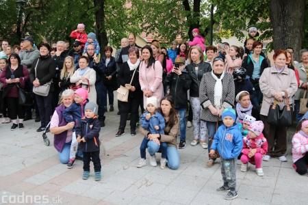 Foto a video: Bojnice - OTVORENIE LETNEJ TURISTICKEJ SEZÓNY 2019 a Oslava 25.výročia Sokoliarov Aquila 54