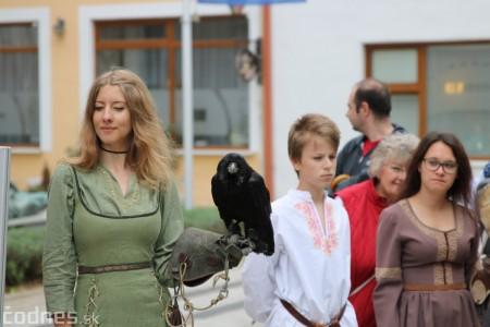 Foto a video: Bojnice - OTVORENIE LETNEJ TURISTICKEJ SEZÓNY 2019 a Oslava 25.výročia Sokoliarov Aquila 57