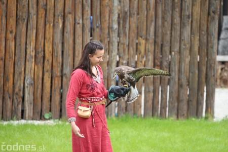Foto a video: Bojnice - OTVORENIE LETNEJ TURISTICKEJ SEZÓNY 2019 a Oslava 25.výročia Sokoliarov Aquila 78