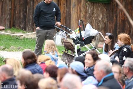 Foto a video: Bojnice - OTVORENIE LETNEJ TURISTICKEJ SEZÓNY 2019 a Oslava 25.výročia Sokoliarov Aquila 80