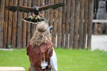 Foto a video: Bojnice - OTVORENIE LETNEJ TURISTICKEJ SEZÓNY 2019 a Oslava 25.výročia Sokoliarov Aquila 85