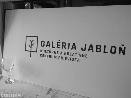 Foto: Galéria Jabloň - Prievidza - deň otvorených dverí 46
