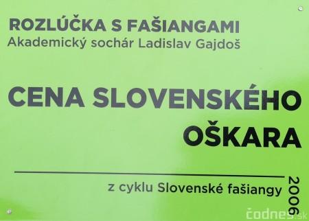 Foto a video: Výstava na pešej promenáde BOJNICE V SOCHE 4. ročník 2
