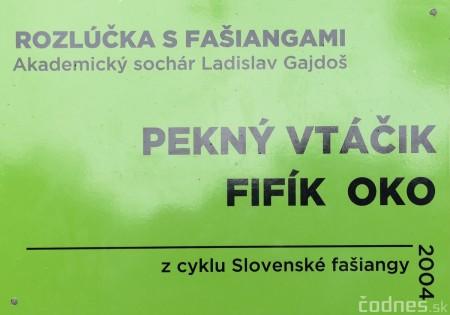 Foto a video: Výstava na pešej promenáde BOJNICE V SOCHE 4. ročník 4