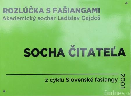 Foto a video: Výstava na pešej promenáde BOJNICE V SOCHE 4. ročník 12