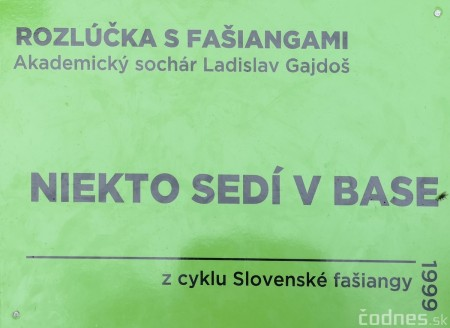 Foto a video: Výstava na pešej promenáde BOJNICE V SOCHE 4. ročník 15