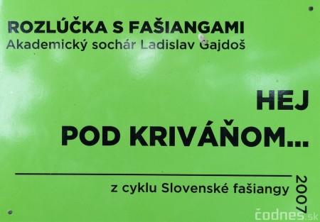 Foto a video: Výstava na pešej promenáde BOJNICE V SOCHE 4. ročník 18