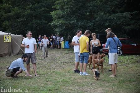 Foto: Festival Tužina Groove 2019 39