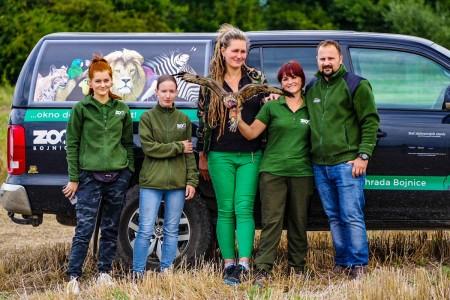 Foto: Zoo Bojnice môže kontrolovať rehabilitáciu vtákov, ktoré vypustili 10