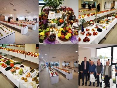 Video a foto: Okresná výstava ovocia, zeleniny a kvetov 2019