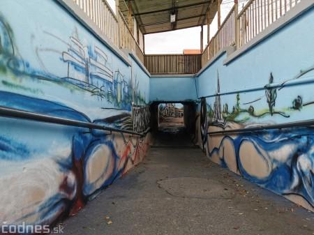 Foto a video: Skrášľovanie podchodu Žabník-Necpaly je hotové 9