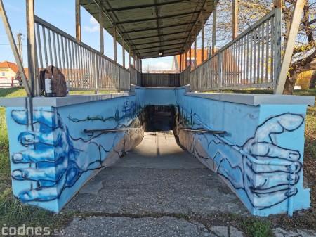 Foto a video: Skrášľovanie podchodu Žabník-Necpaly je hotové 15