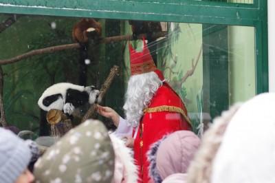 Foto: Bojnickú zoo navštívil ekologický Mikuláš, v príhovore sa venoval aj ochrane životného prostredia