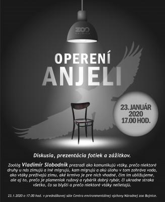 Operení anjeli