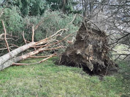 Pozor na silný vietor v Prievidzi a okolí. Vyvracal stromy a ničí majetok 0