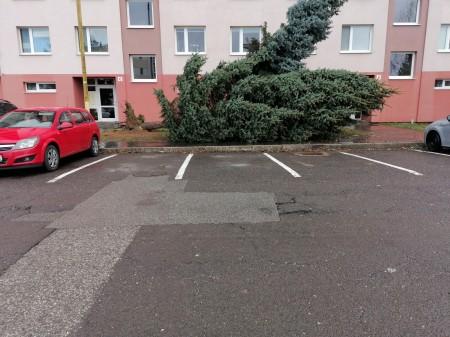 Pozor na silný vietor v Prievidzi a okolí. Vyvracal stromy a ničí majetok 6