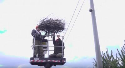 Video: Bude Prievidžanov viac? Nainštalovali nové hniezdo pre bociany