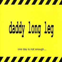 Prievidzská hudobná scéna v rokoch 1990-2010 - Daddy Long Leg/Dlhá noha 324