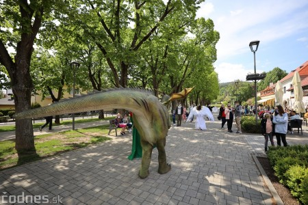 Foto a video: Prechádzka draka v Bojniciach alebo Dračie korzovanie 6
