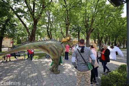 Foto a video: Prechádzka draka v Bojniciach alebo Dračie korzovanie 8