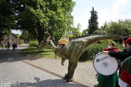 Foto a video: Prechádzka draka v Bojniciach alebo Dračie korzovanie 22