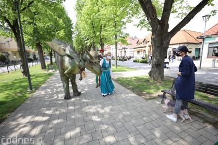Foto a video: Prechádzka draka v Bojniciach alebo Dračie korzovanie 41