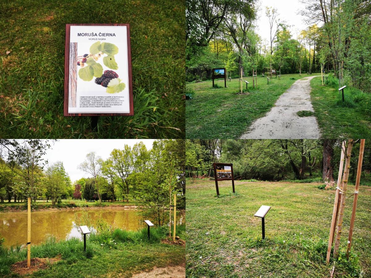 Foto: Mestský park v Prievidzi sa rozvíja vďaka novým projektom