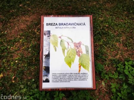 Foto: Mestský park v Prievidzi sa rozvíja vďaka novým projektom 2