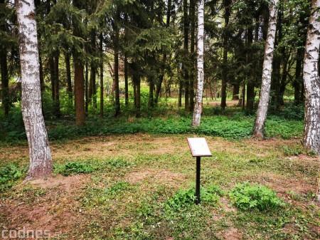 Foto: Mestský park v Prievidzi sa rozvíja vďaka novým projektom 3