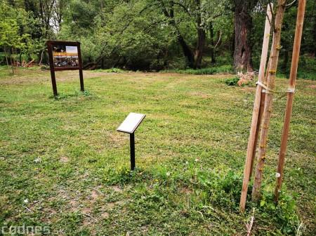 Foto: Mestský park v Prievidzi sa rozvíja vďaka novým projektom 9